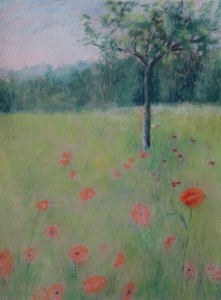 Rene Ellis 512 Poppy's Dream